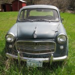 front, Fiat Cabriolet 1950's